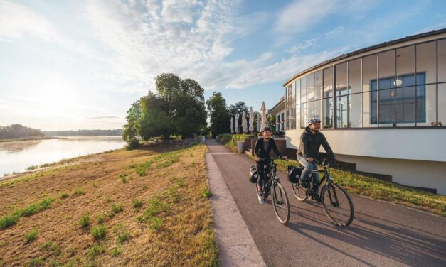 Elberadweg erneut zum beliebtester Radfernweg in Deutschland gewählt