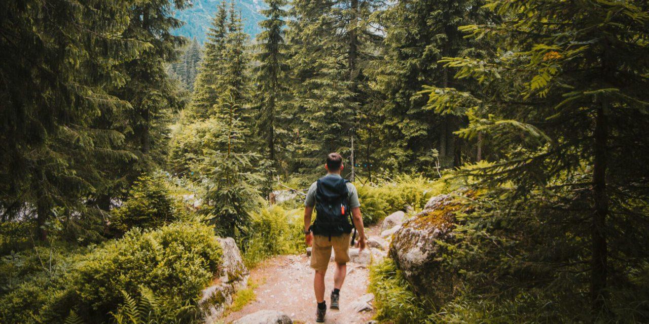 Wandern auf den Süchtelner Höhen